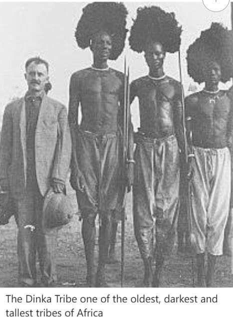 dinka tribe hebrew e1b1a haplogroup pinterest african tribes