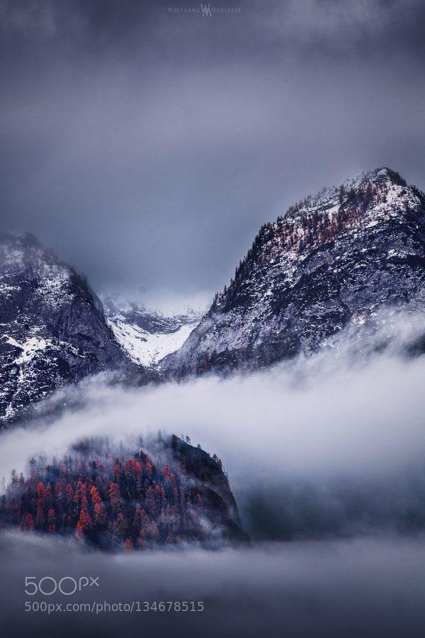 Winter Fog - Pinned by Mak KhalafFACEBOOK INSTAGRAM | @wolfgangmoritzer 500px Landscapes alpineautumncolorsfallfoghikinglandscapemistmountainmountainsnatureoutdoorssnowtraveltreeswinter by wmoritzer