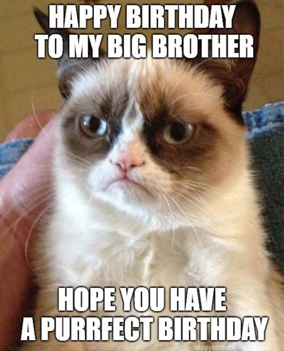 Funny Brother Birthday Meme : funny, brother, birthday, Happy, Birthday, Brother, Ideas, Brother,, Meme,, Funny
