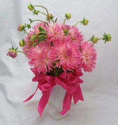 Pretty dahlias in a vase (August and Sept only) $55.00