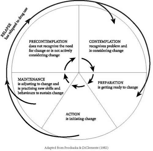 diagram of the change cycle - Google Search | Sunflower ...