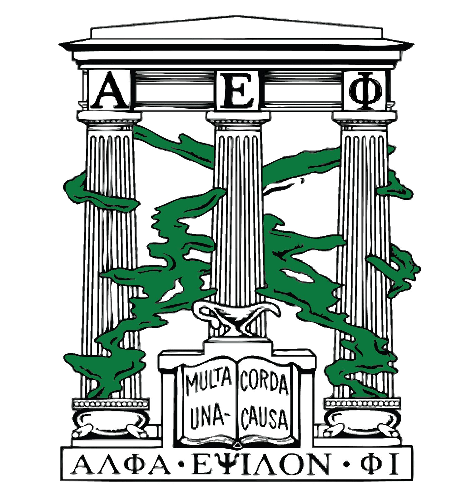 Sororities Alpha Epsilon Phi