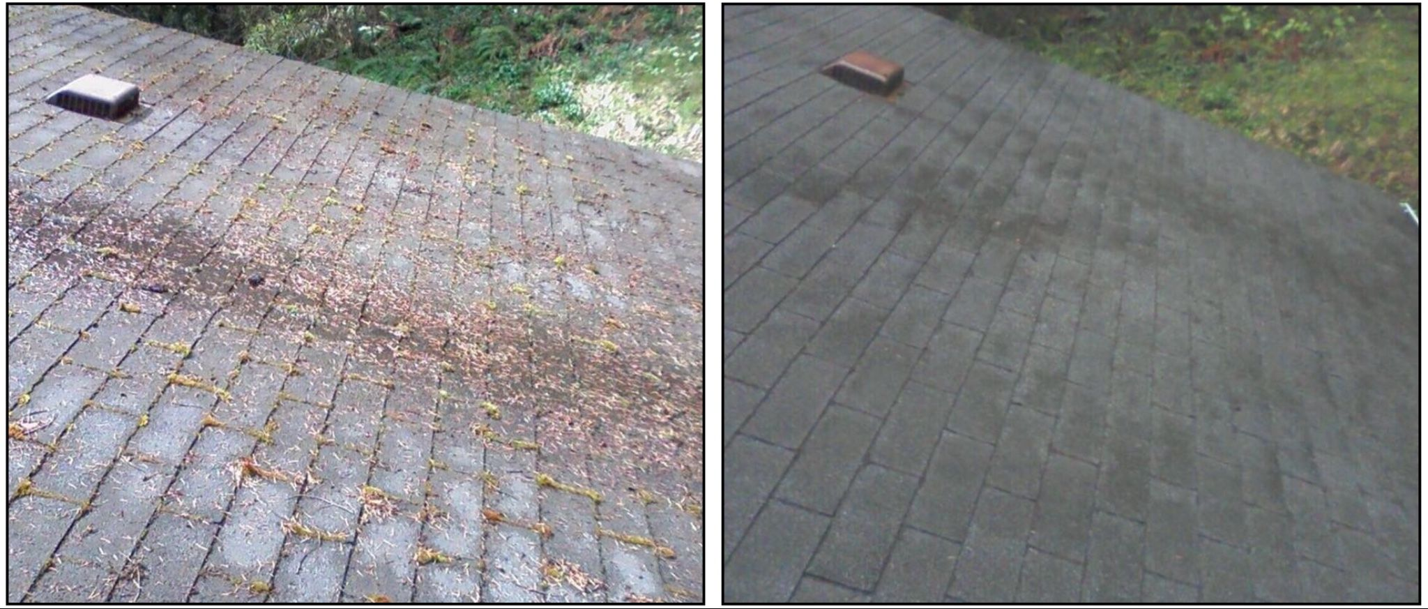 Success Northern Restoration Roof Cleaning Cleaning Gutters Cleaning