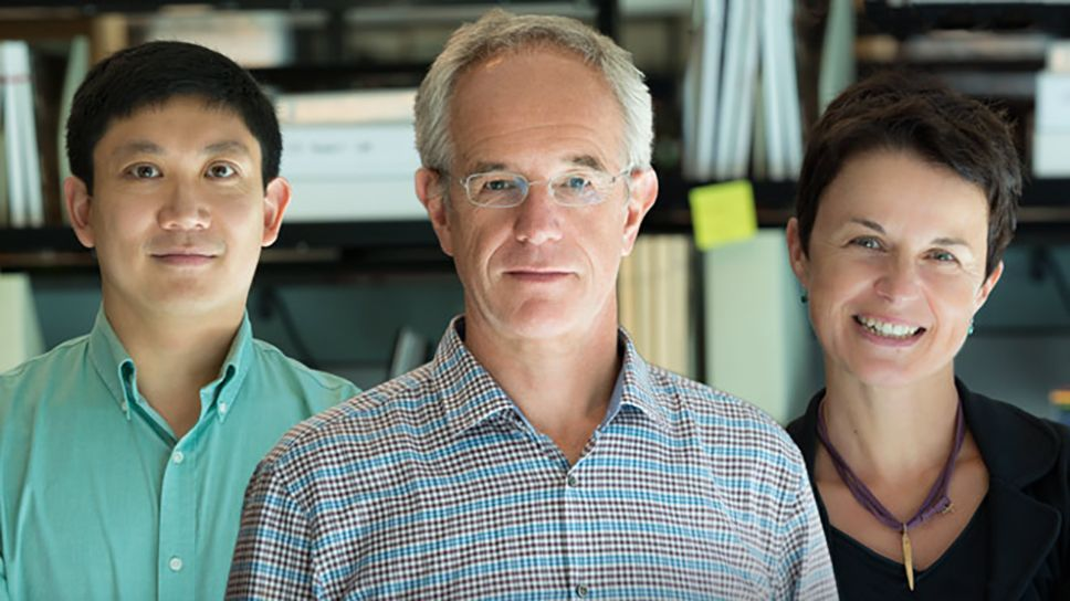 Virology Research Goes Viral: Advances made in the fields of virology and immunology often spread from one disease to another.   Gladstone Institutes – Science Overcoming Disease