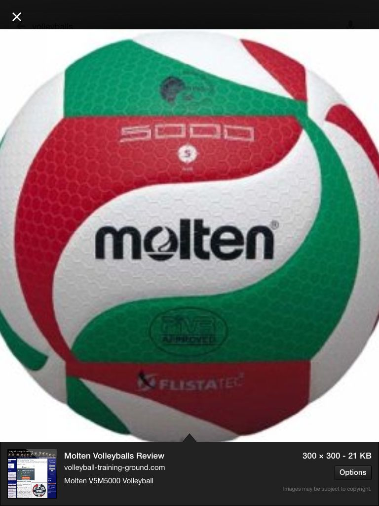 Vollyball Molten Volleyball Volleyballs Volleyball