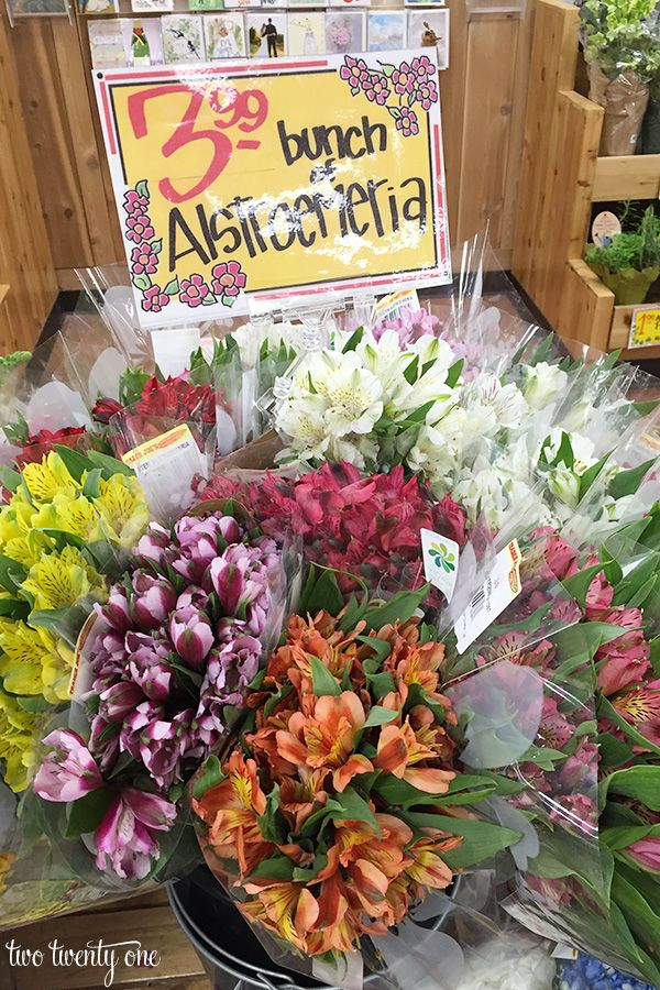 What To Buy At Trader Joe S Trader Joes Flower Pictures Beautiful Flowers Pictures