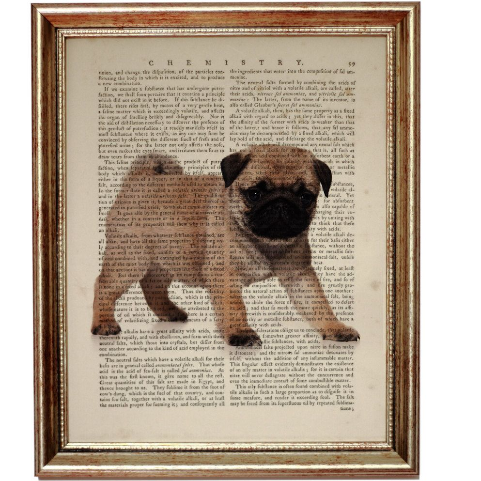 Dog Print, Dog Wall Art, Pug Gift Pug Lover Gift, Pug Dog