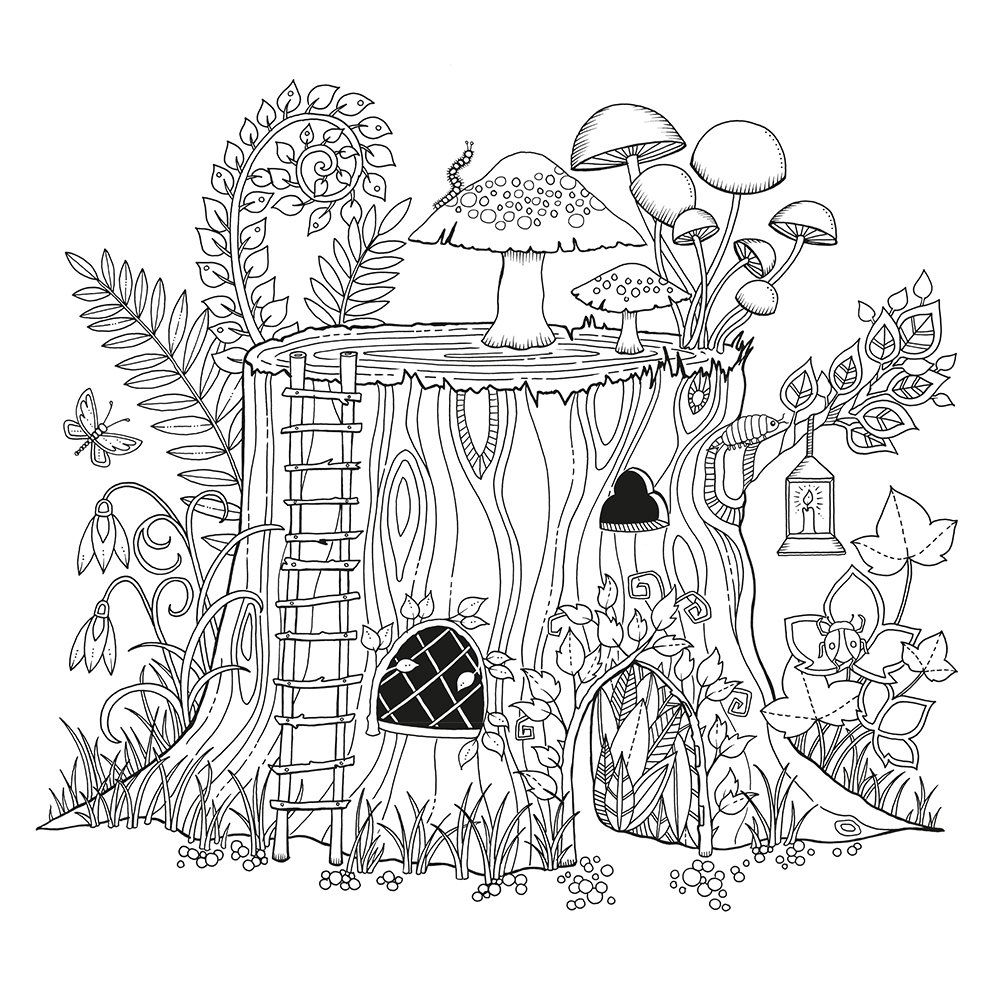 Artist Johanna Basford Enchanted Forest Coloring Pages Garden Flower Colouring Adult Detailed