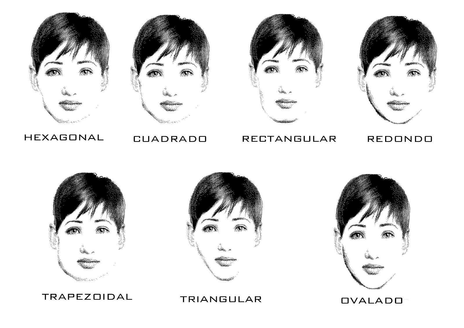 tipos de rostros  copia