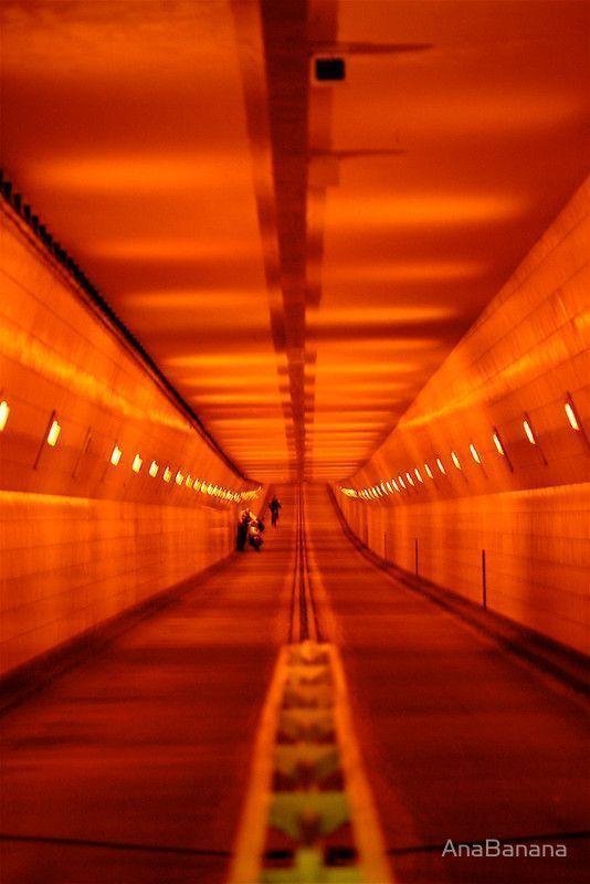 Aurantiaco Orange Orange Aesthetic Portokalinaranjaorange ال Æ©™ Orange Aurantiaco Portokali Nar Orange Aesthetic Orange Wallpaper Aesthetic Wallpapers