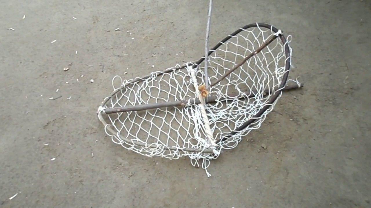 How To Make A Bird Trap Homemade Bird Trap Bird trap