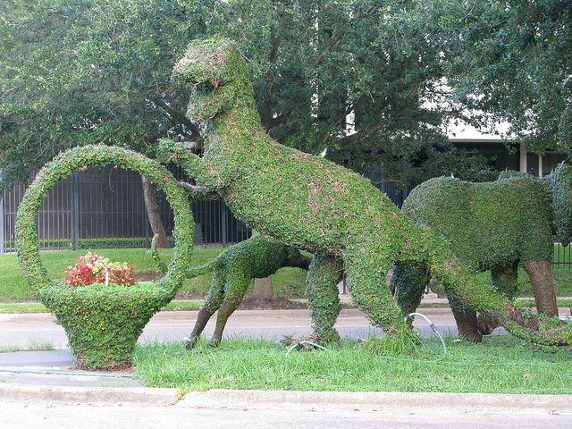 Dinosaur Topiary, Houston, TX By Gtocruzr, Via Flickr. Topiary GardenGarden  ArtGarden SculpturesEdward ...