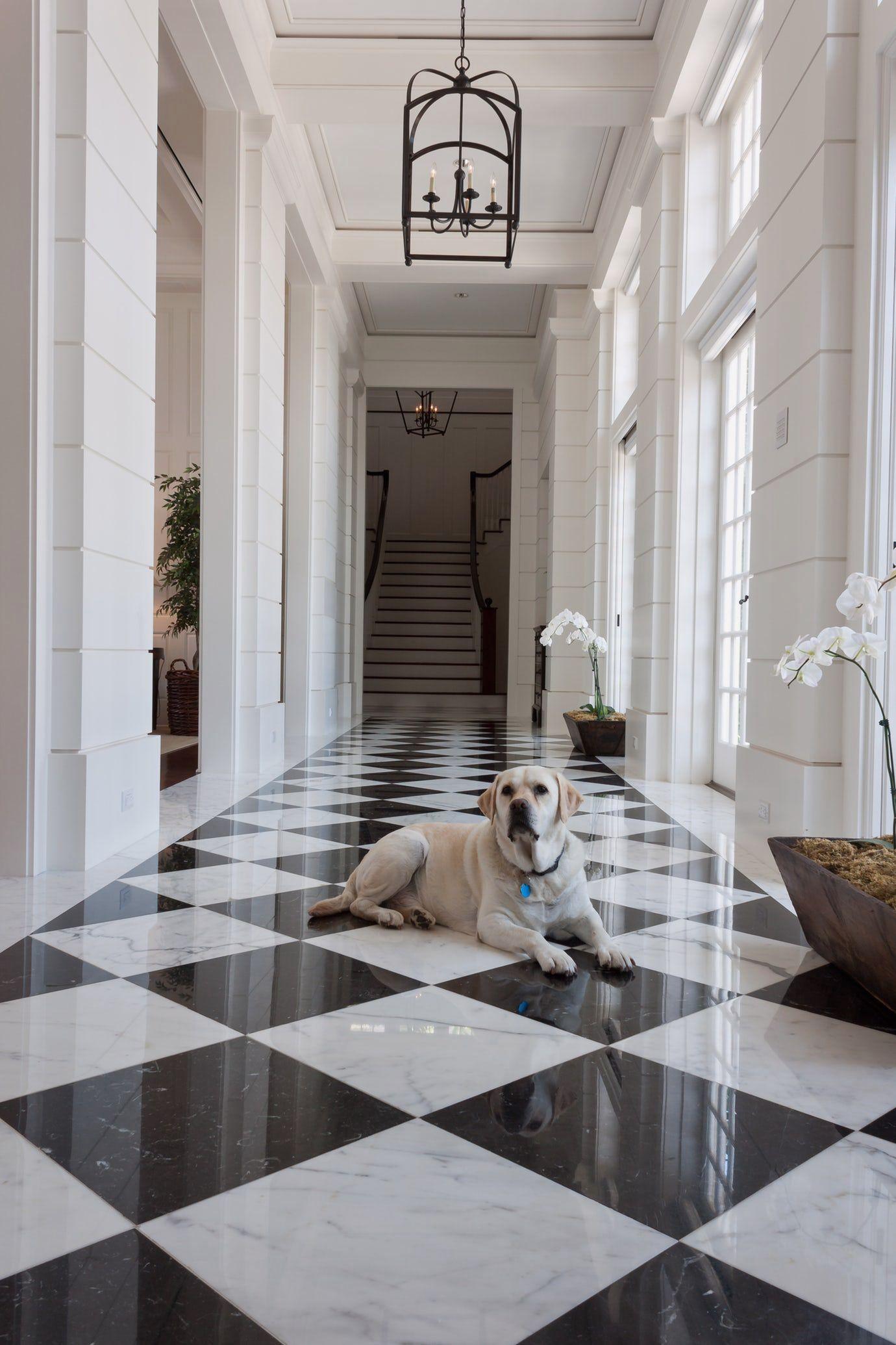 14 Sunny Gray Marble Floor Design   White Marble Floor, Marble House, Black And White Hallway