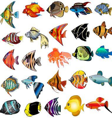 Imagem Relacionada Pinturas De Peixes