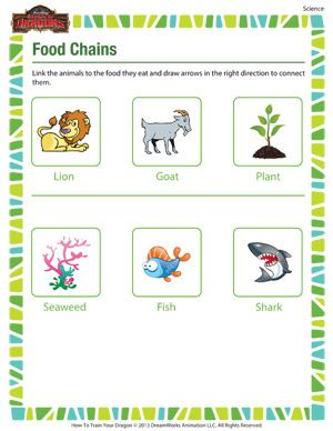 Food chains printable 2nd grade science worksheet aishath ali food chains printable 2nd grade science worksheet aishath ali pinterest science worksheets worksheets and science ibookread Download