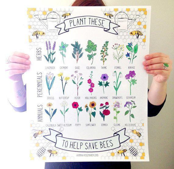 Plant These to Help Save Bees 16x20 Poster OR 8x10 Print 16 x 20 Pflanzen Sie diese Hilfe speichern von HannahRosengren 3600
