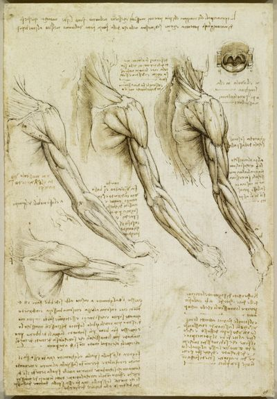 Da Vinci. Saw this exhibit a year or so ago. Amazing. This was one ...
