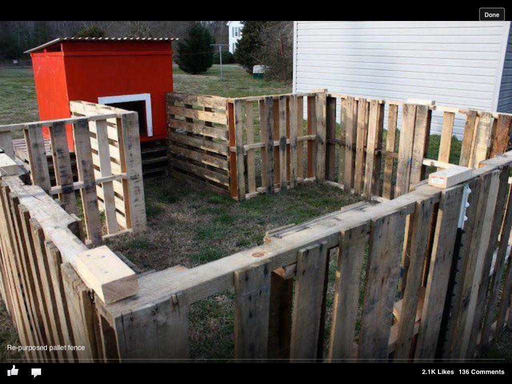 Wood pallet fence | Yard Ideas | Pinterest