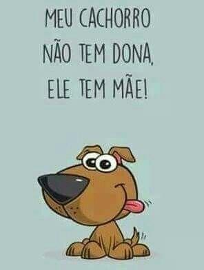 Cachorro Cao Pinterest Amor Animal Cachorros Y Frases