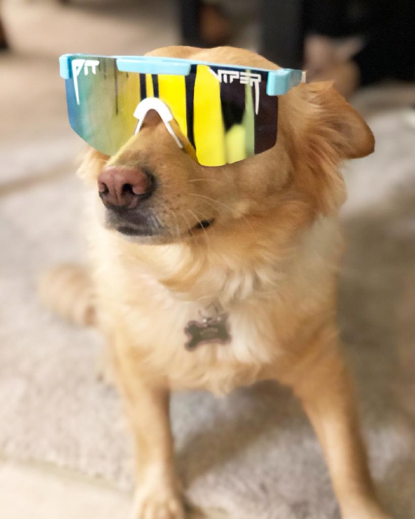 The Cannonball Polarized Pit Viper Pit Viper Sunglasses Yellow Mirrors