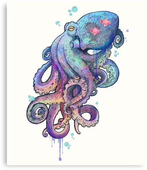 Photo of 'octopus ' Canvas Print by lauragraves