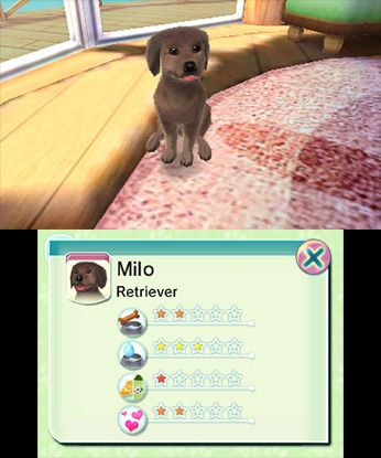 Nintendo Com Paws Claws Pampered Pets Resort 3d Game Info