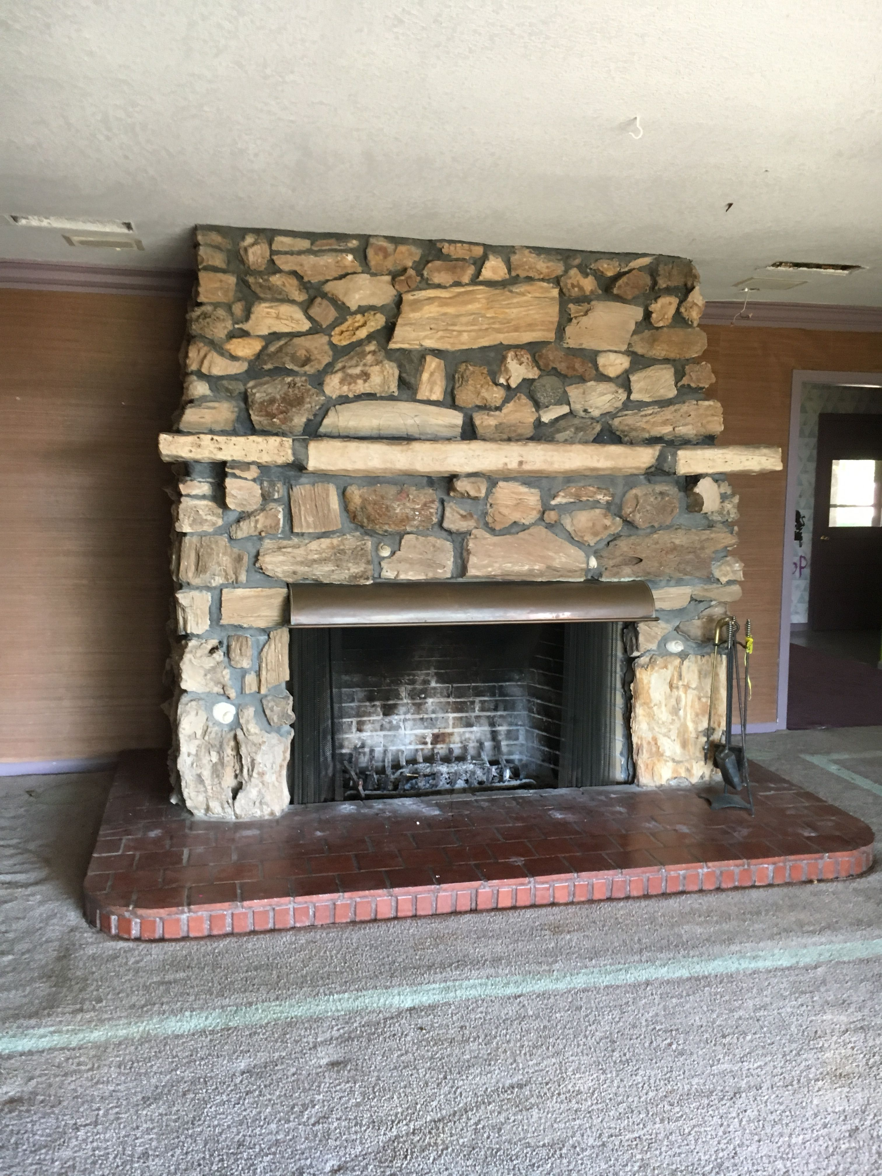 petrified wood fireplace
