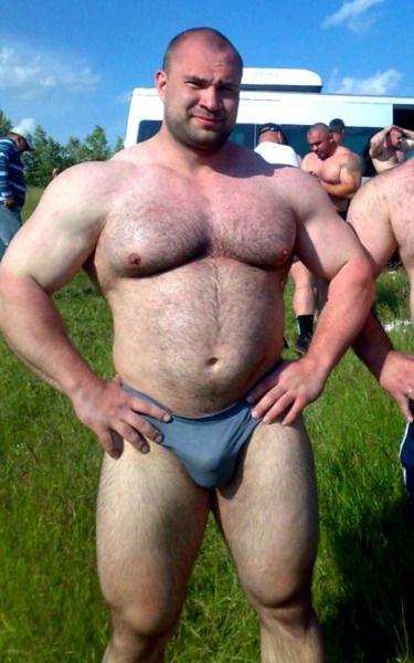 Ass bear gay