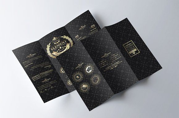 Sicenrial Elegant Trifold Brochure by EVNY on