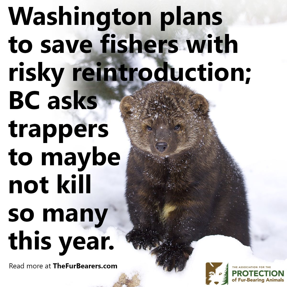 Washington state and the federal US government want to