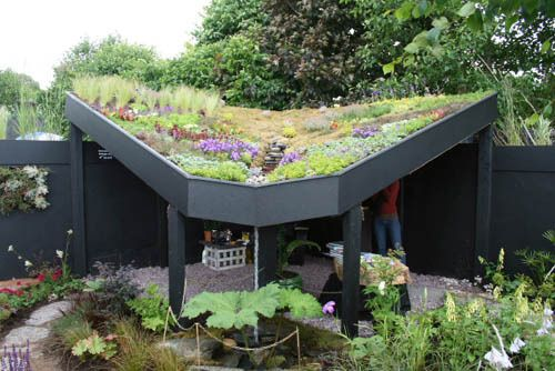 Living Roofs Made Easy Simple Tips For Getting Started