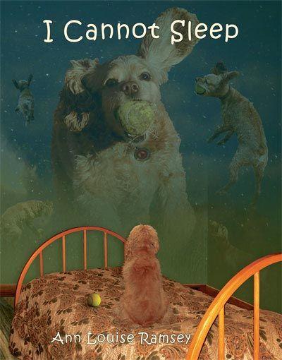 I Cannot Sleep children's picture book. #childrenspicturebooks