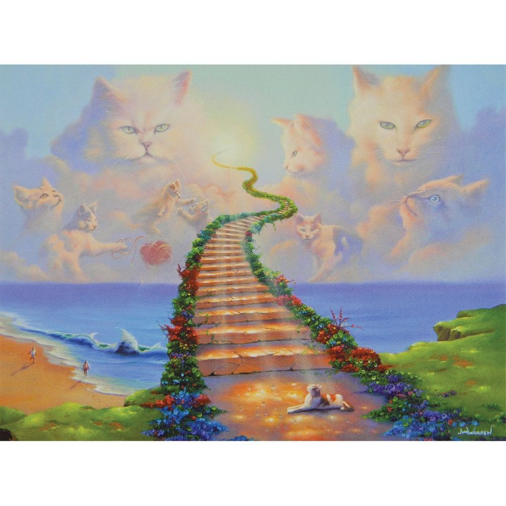 Cat heaven by fairyjulie on animal resource sites