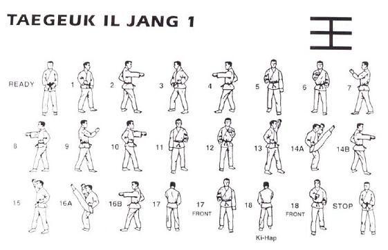 Taekwondo : Video 1