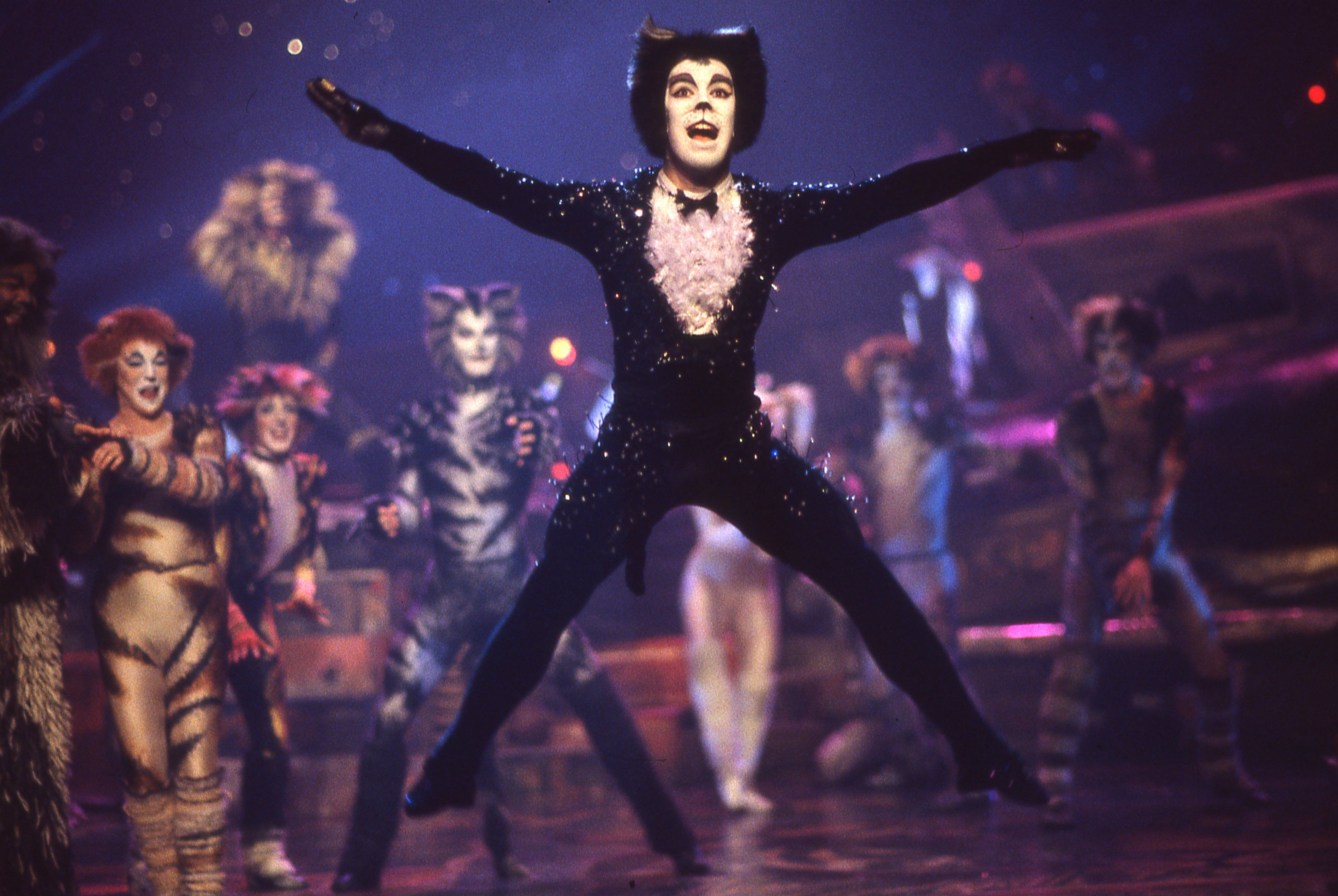 Pin By Latasha Perry On Cats Andrew Lloyd Webber Cats Musical Cats Cast Jellicle Cats