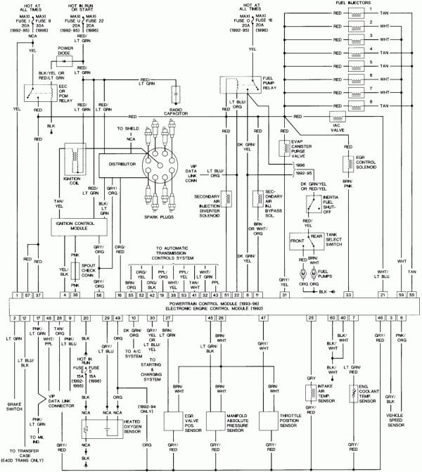 1996 Ford F150 Engine Wiring Diagram And F Ecm Wiring