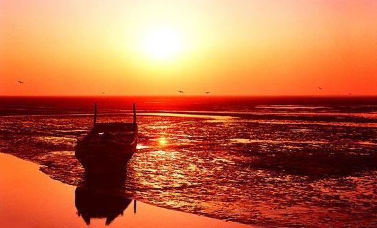 Yellow River Delta - Dongying - China
