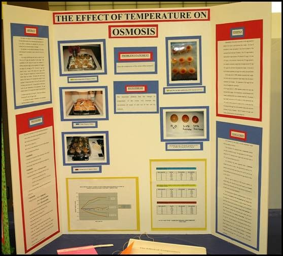 √ Science fair projects poster pasoevolistco present science
