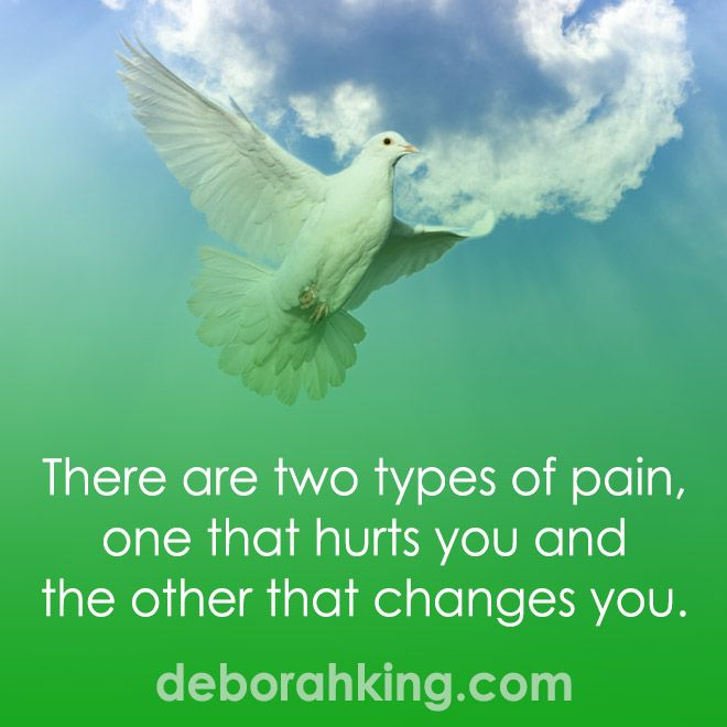 Inspirational Quote: There Are Two Types Of Pain, One That Hurts You And The