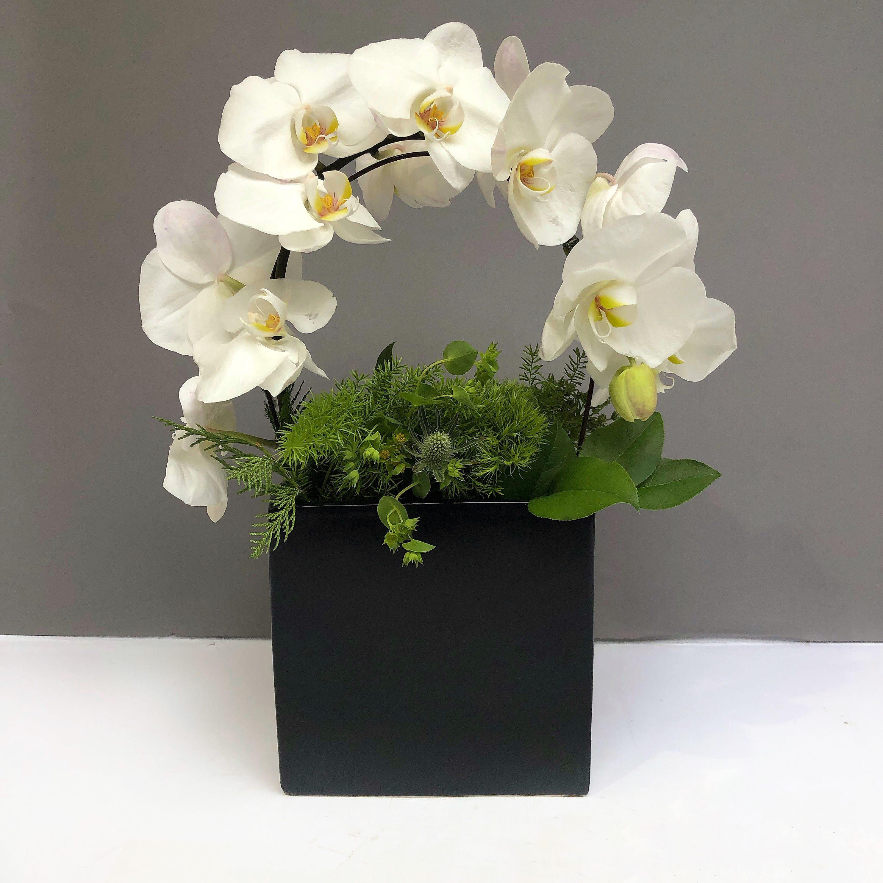 White Phalaenopsis Orchid With Greenery In A Black Vase Same Day Delivery I Orchid Flower Arrangements Flower Arrangements Simple Creative Flower Arrangements