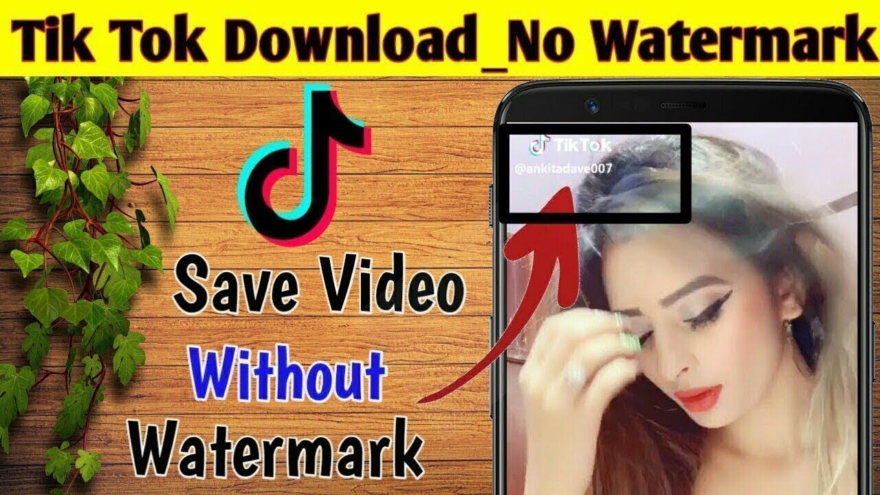 how to download tikok videos without watermark in urdu