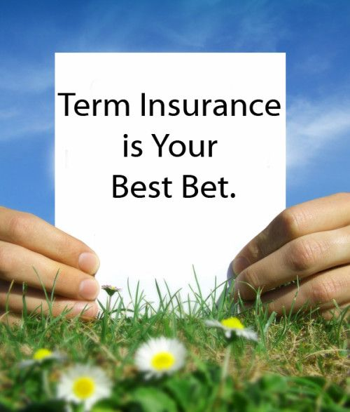 Cheap Term Life Insurance Quotes Delectable Life Insurance Quotes  The Importance Of Life Insurance