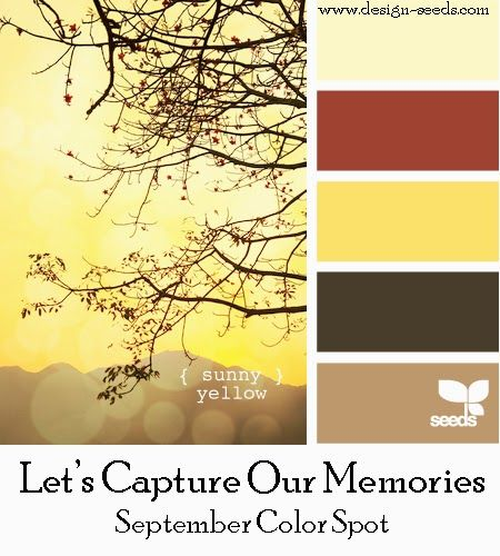 Let S Capture Our Memories September Color Spot Colonial White Sorbet Or Barn Red Canary Cocoa Cashmere