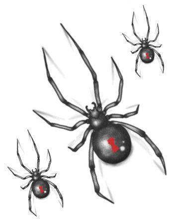 Black Widow Temporary Tattoo Black Widow Tattoo Spider