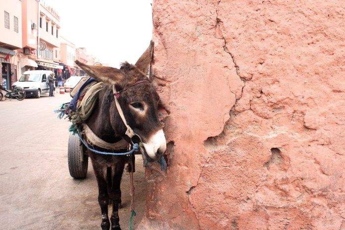 MARRAKECH // 48 HOUR GUIDE – The Layover Life