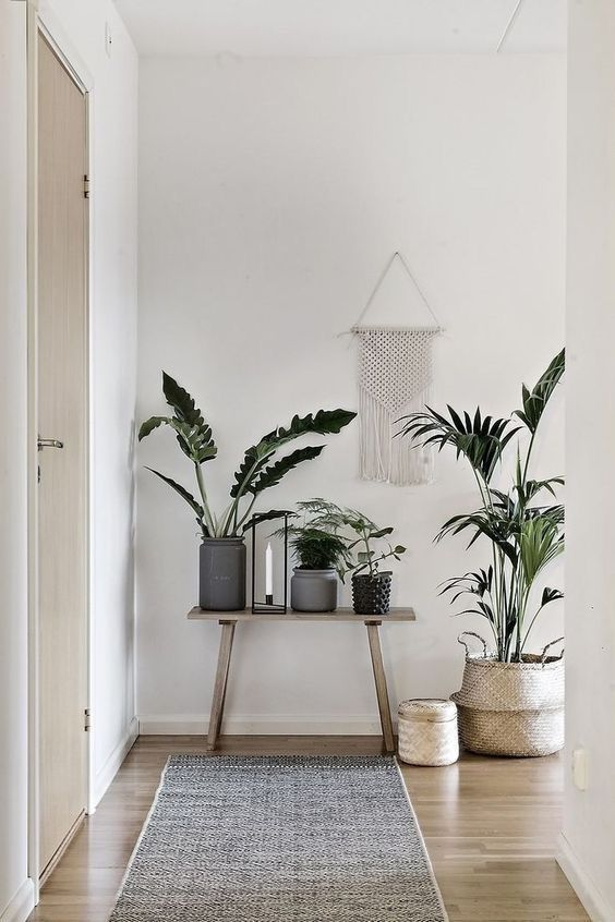 Instagram Shop: Ev dekorasyon dekoratif ayaklı saksı