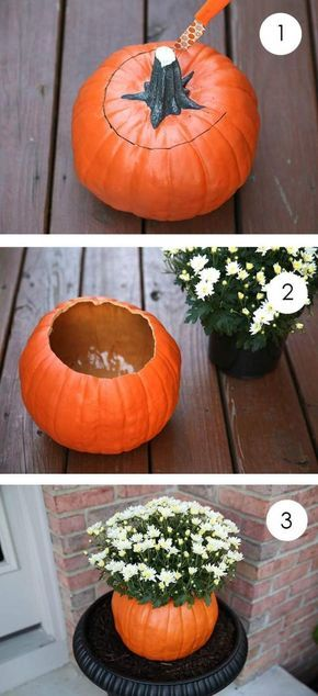Basteln Kürbis Vase Mit Weißen Chrysanthemen Herbst