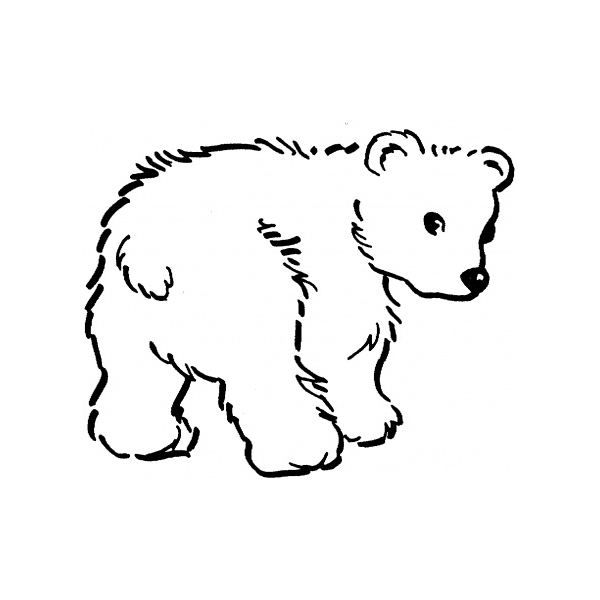 Top 5 Resources For Animal Coloring Sheets Polar Bear Coloring Page Bear Coloring Pages Polar Bear Color