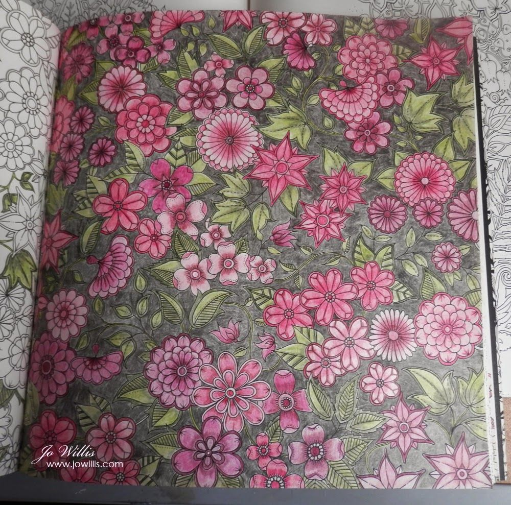 The secret garden coloring book finished - This Colouring Page From Johanna Basford S Secret Garden Book Has Been On The Go For A While It S Actually Part Of A Double Page But I M C