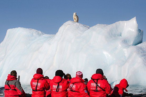 The Arctic in Focus
